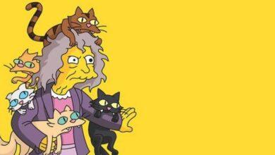 Photo of Los Simpson: ¿qué profesión tiene la Señora de los gatos?