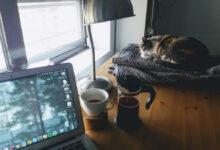 Photo of Las mejores webs contra el aburrimiento y para escapar de las redes sociales