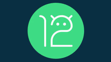 Photo of Android 12 Developer Preview 2.1 llega para corregir WebView