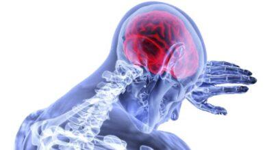 Photo of La vacuna para el cáncer de cerebro, estamos mucho más cerca