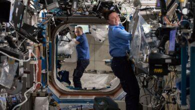 Photo of Estudio encuentra que el corazón de los astronautas se reduce en la ISS y explican como incide en los futuros viajes espaciales