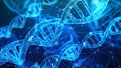 Photo of Científicos demuestran la inmensa diversidad de nuestra especie identificando 64 genomas humanos