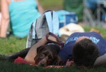 Photo of Estudio encuentra que la necesidad de tomar una siesta en las tardes podría ser algo hereditario que está en al ADN