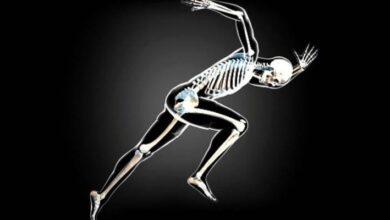 Photo of La salud de los huesos podría estar en peligro para quienes siguen una dieta vegana, demuestra un estudio