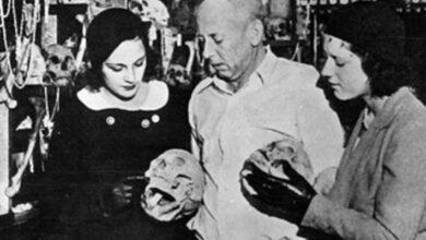 Photo of ¿Cuánto mide el esqueleto humano más grande que se haya encontrado?