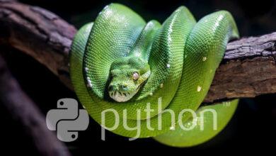 Photo of Free Python Books: la lista definitiva de libros gratis para desarrolladores que quieren aprender Python