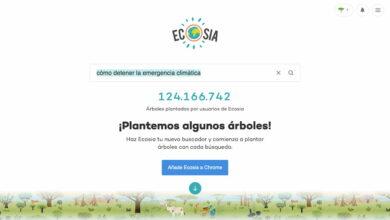 Photo of Ecosia: árboles a cambio de búsquedas