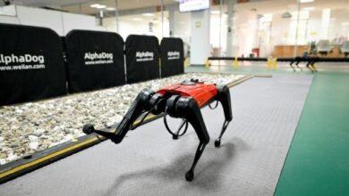 Photo of Conoce a los AlphaDog: perros robóticos con inteligencia artificial y conectividad de internet a velocidad 5G