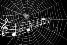Photo of Música extraída de las telarañas, lo nuevo de la ciencia