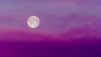 Photo of Luna Rosa: ¿cada cuánto ocurre y cuándo será la siguiente?