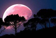 Photo of Superluna Rosa: ¿en qué países se verá el fenómeno astronómico de abril