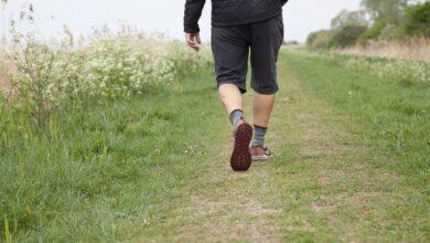 Photo of Salud: 7 cosas buenas que pasan si caminas todos los días