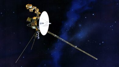 Photo of La sonda Voyager 1 envía señales desde las afueras del sistema solar
