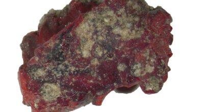 Photo of Los primeros cuasicristales de origen terrícola fueron detectados en vestigios de la primera bomba nuclear