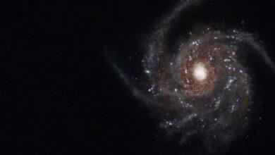 Photo of Científicos británicos miden por primera vez la reducción de la velocidad en el giro de la barra galáctica en la Vía Láctea