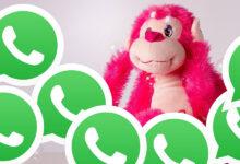 Photo of WhatsApp pronto podrá correr en cuatro dispositivos simultáneos