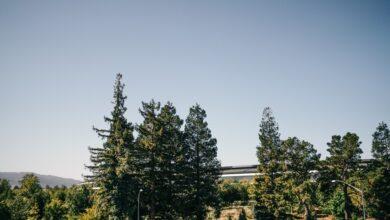 Photo of Localizando el talento alrededor del mundo: Apple se expande más allá de Silicon Valley para favorecer la contratación de personal