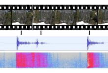 Photo of FoleyGan, una IA que puede generar sonidos para vídeos mudos