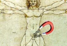 Photo of Imanes como método anticonceptivo masculino