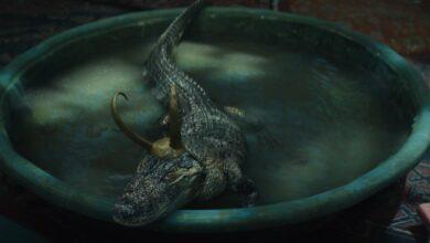 Photo of ¿De dónde salió el cocodrilo Loki y por qué destacó en el episodio 5?