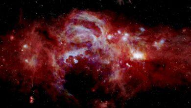 Photo of Científicos espaciales comparten sorprendentes imágenes de galaxias que lucen como explosiones de fuegos artificiales
