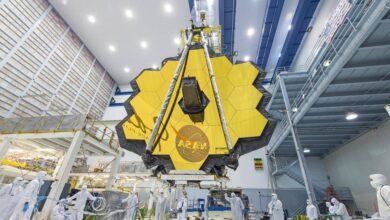 Photo of El impresionante elemento estelar en el universo que los científicos esperan detectar con el telescopio espacial James Webb