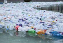 Photo of Ambiente: ¿todavía estamos a tiempo de detener la contaminación por plástico?