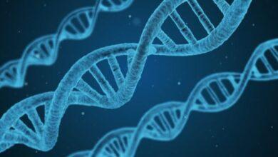 Photo of Empresa crea máquina para realizar experimentos con el ADN